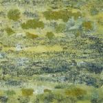 Korstmos groengeel