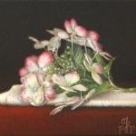Bloemstilleven met Hortensia