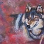 Kijkende wolf