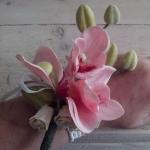 Polscorsage Orchidee
