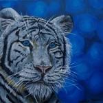 Witte Tiger