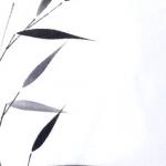 Bamboe tak