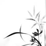 Orchidee en bamboe