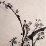 Plum brunches