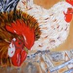 Kip en Haan in het Kippenhok