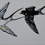 Boeren Zwaluwen