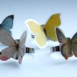 Vlinder ringetjes
