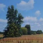 dutch savanna