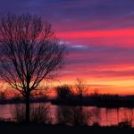 Maas zonsopkomst