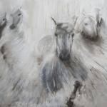camargue paarden 3