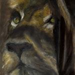 portret van leeuwin