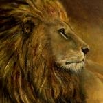 portret van leeuw