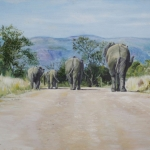 Pedestrians in the Kruger Park