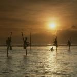 Stokvissers voor de kust bij Gall - Sri-Lanka