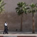 Wandelend onder palmbomen Meknez Marokko