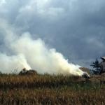 Restafval rijst verbranden Java