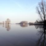De IJssel bij Brummen