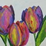 Multi color tulpen