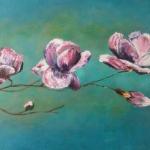 Bloeiende magnolia tak