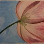Tulp in de lucht