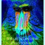 MonkeyFlower
