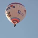 Gewone ballon