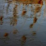 Frozen reflection IV