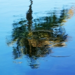 Reflectie in water (3)