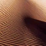 Woestijn 7