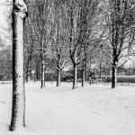 Winter 2015 - 2