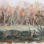 De Gorsselse Heide 4