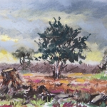 De Gorsselse Heide 1