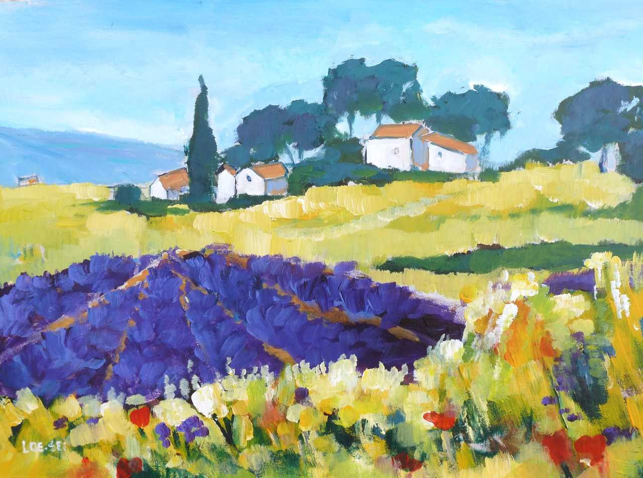 Provence (8)