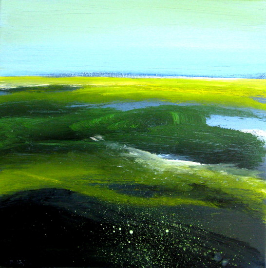 de Zeeuwse kust 5