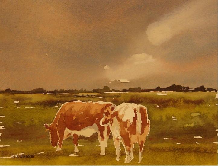 2 Roodbonte koeien