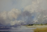 seashores and beaches in oil
