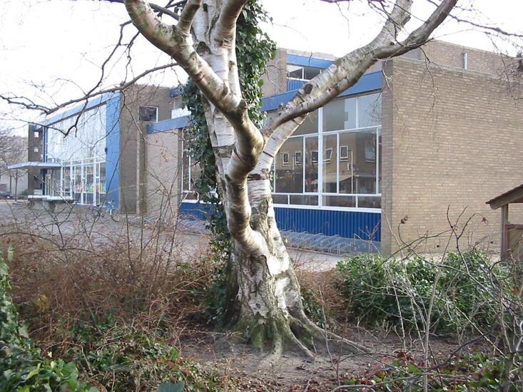 Oude Montesorischool-a