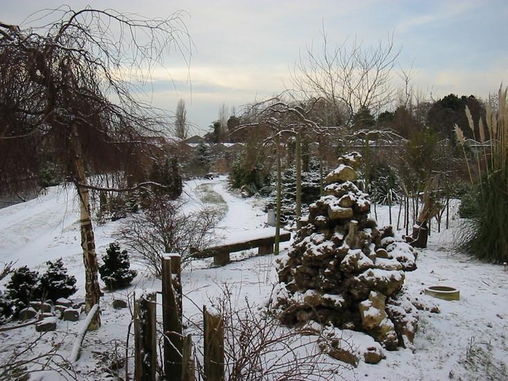 Winter -2