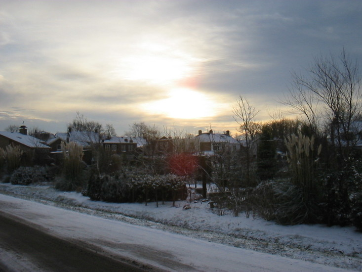 Winter -2b