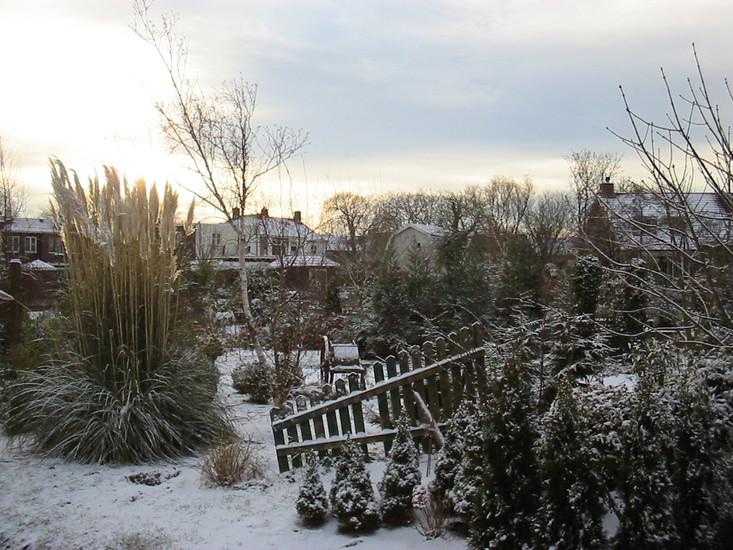 Winter -2c