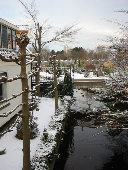 Winter -0a