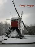 Deze molen staat in het Irispark nabij het winkelcentrum Lange Voort-Irislaan.