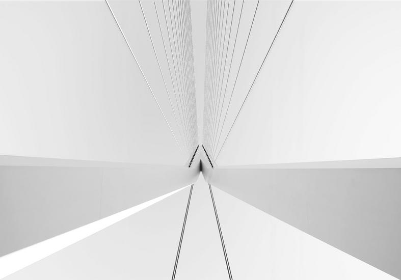 Erasmus Bridge 2