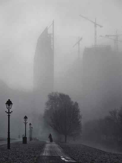 Foggy Morning inThe Hague 2
