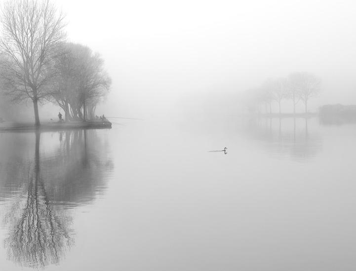 Morning fog 1