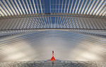 Photo's from my visit to the famous Caltrava designed train station in Liege