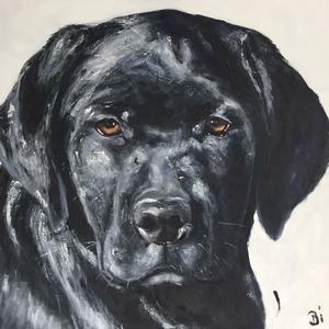 Portretten van dieren