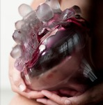 'Kwetsbaarheid' Geblazen glas