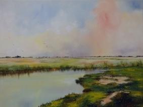 15007 - Wetland