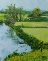 Zonovergoten polder